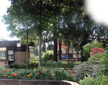 Progettazione giardini Bologna